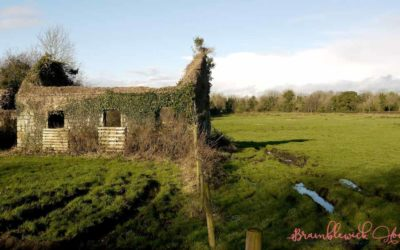 Irelands Haunted Landscapes